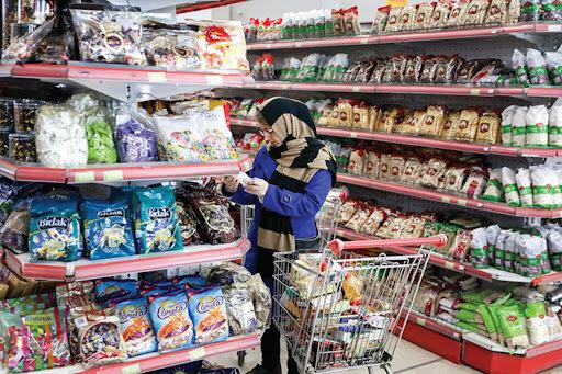 بیشترین منابع درآمد خانوارهای ایرانی اعلام شد