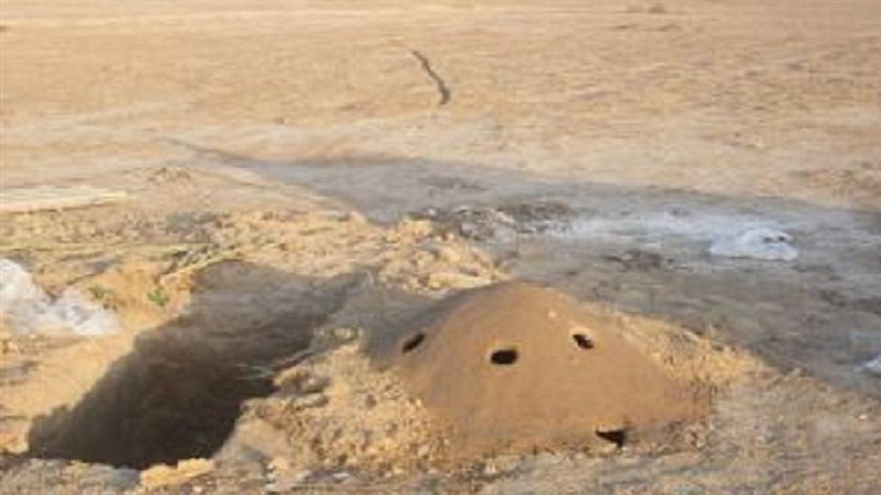 کوخه زندهگیری پرندگان شکاری در دیر نابود شد