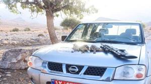 دستگیری شکارچیان سابقهدار در پارک ملی خبر