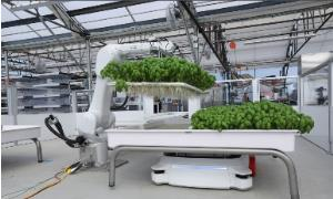 کشاورزی رباتیک با خشکسالی مبارزه میکند