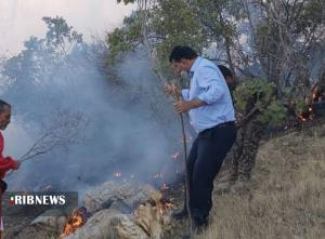 شعلهور بودن آتش در منطقه حفاظت شده کوه دیل گچساران