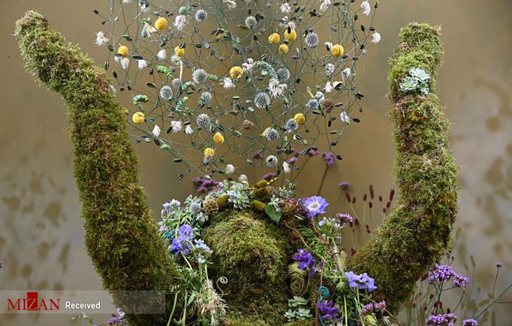 هنر گل آرایی در نمایشگاه چلسی لندن