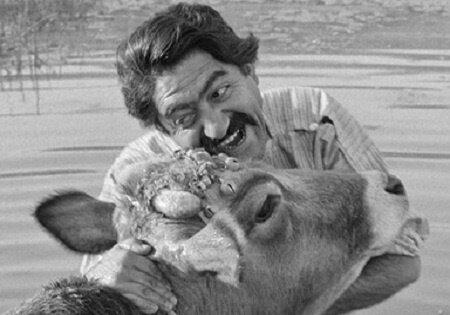 اکران فیلمهایی از گنجینه سینمای ایران در موزه سینما