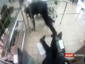 لحظه هولناک سرقت مسلحانه به صندوقداران فروشگاه