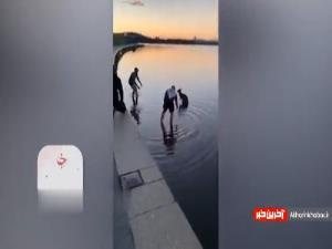 لحظه نجات کانگورو از حاشیه رودخانه