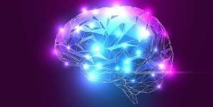 کدام عملکرد مغز در مدیریت بحران نقش کلیدی دارد؟