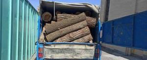 کشف ٢ تن چوب قاچاق در مهاباد