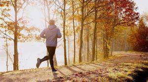 تاثیرات پاییز بر وضعیت سلامت؛ از افزایش هوش تا تشدید درد مفاصل