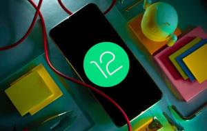 شیائومی اندروید ۱۲ را ابتدا برای این گوشیها عرضه میکند