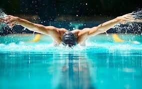 شناگر ایرانی بورسیه فینا میشود
