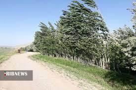 کاهش محسوس دمای هوا در زنجان