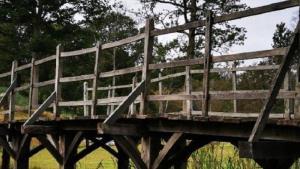 4گوشه دنیا/ راز پلی که ۱۸۰ هزار دلار فروخته شد، چیست؟