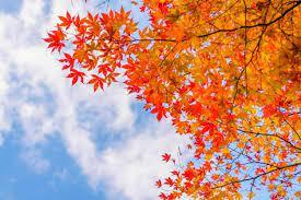 آسمان اردبیل تا پایان هفته آرام است