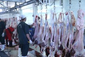 رعایت نرخنامه گوشت قرمز در خراسان جنوبی الزامی است