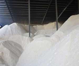 فاسد شدن بیش از دو هزار تن شکر در گمرک