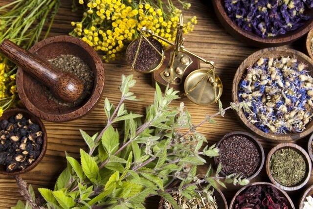 گیاهان دارویی؛ اقتصاد نهفته در لرستان