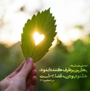✨امیرالمومنین امام علی علیه السلام فرمودند:  بهترین برطرف کن