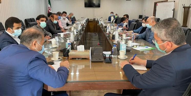 روسیه مقصد جدید خرمای بوشهر