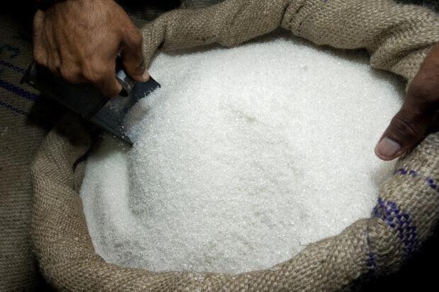رئیس اداره بازرگانی داخلی سازمان صمت: خراسان رضوی قدرت تامین شکر مصرفی خود را دارد