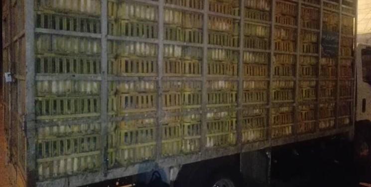 توقیف محموله ۴ هزار کیلویی مرغ زنده در قروه