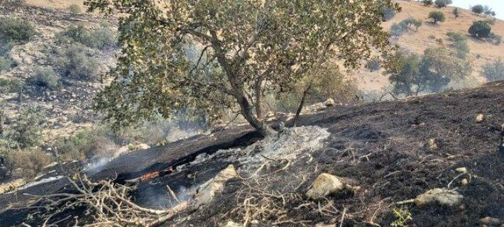 مهار آتش در ارتفاعات کازرون
