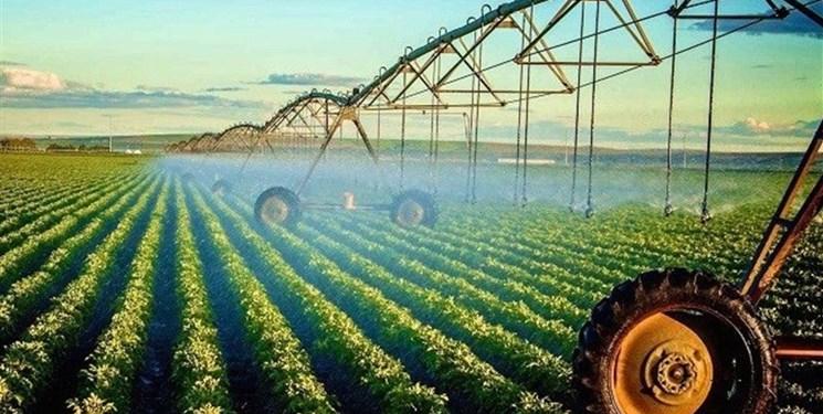 قطع دست دلالان از محصولات کشاورزی آذربایجانشرقی با کشت قراردادی