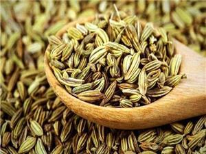 بهره گیری از داروهای گیاهی برای درمان بیماری های متابولیک