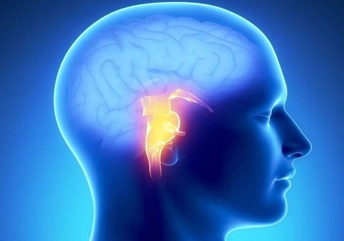 سلول های هدف در بیماری آلزایمر باعث آشفتگی در خواب فرد می شود