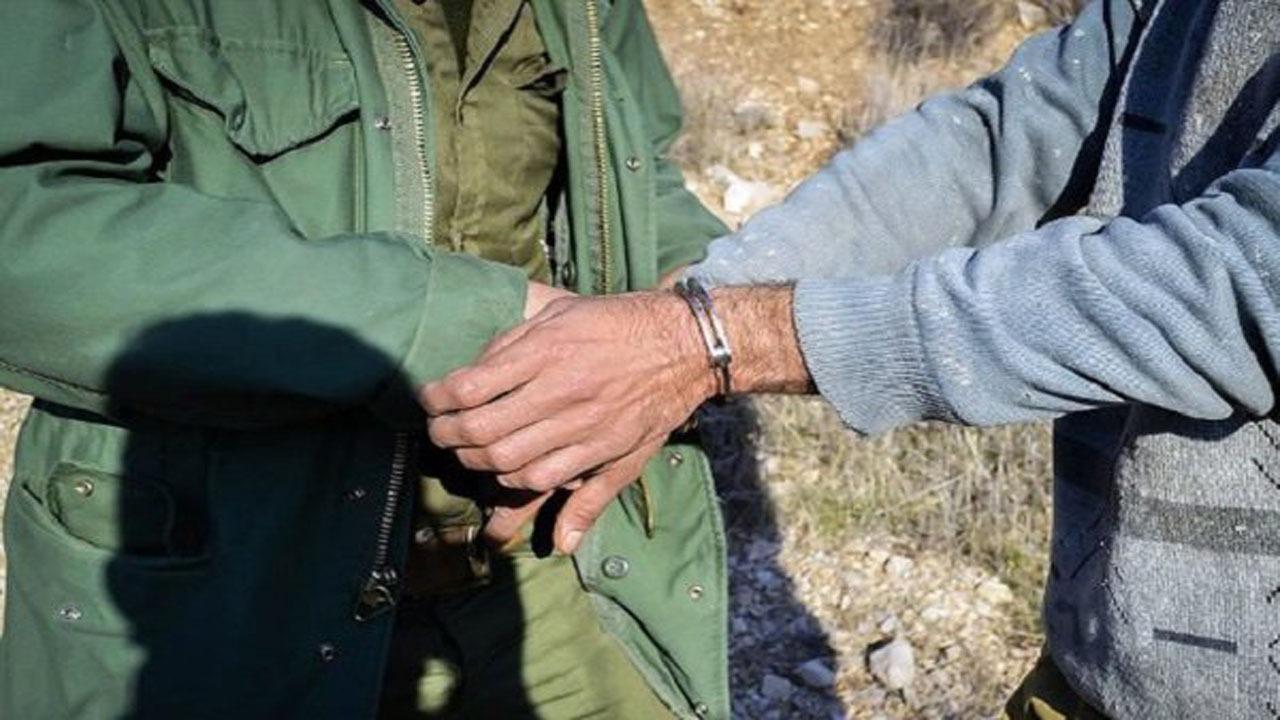 دستگیری گسترده متخلفان شکار و صید در مازندران