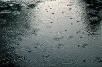 کاهش ۴۷ درصدی بارندگی استان بوشهر در سال آبی اخیر
