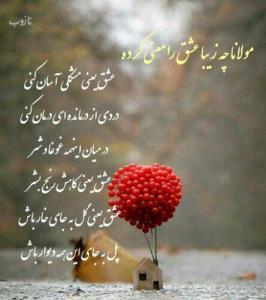 مولانا چه زیبا عشق را معنی کرده ♥️♥️♥️