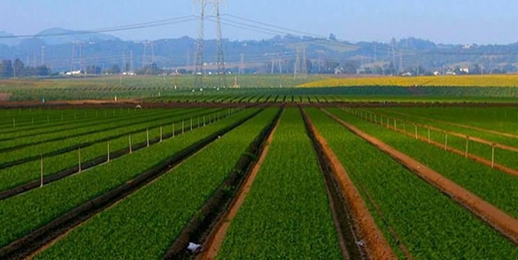 وقف ۱۲ هزار مترمربع زمین کشاورزی در بروجن