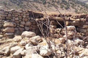 پرداخت خسارت دامداران آسیبدیده از زلزله در اندیکا