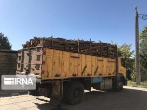 ۱۰ تُن چوب قاچاق در مهاباد توقیف شد