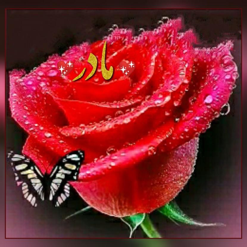 هدیه به عزیزان آسمانی الفاتحة مع الصّلوات