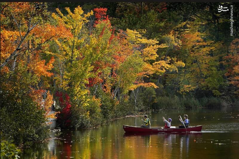 زیباترین عکسهای پاییزی از سراسر دنیا
