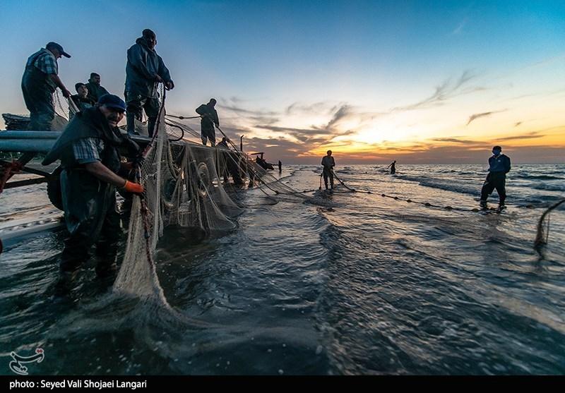 آغاز فصل صید ماهی در مازندران