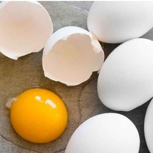 تر�ند گر�تن بوی خامی تخم مرغ در شیرینی پزی