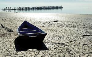 ورود دادگستری به پرونده احیای خلیج گرگان
