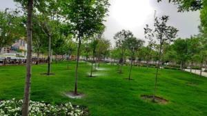 فضای سبز بوستان لاله قم بهسازی میشود