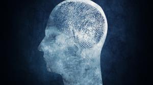 مغز ما «اثر انگشت» دارد!