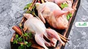 فواید گوشت بلدرچین و مضرات آن برای بدن