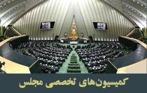 بررسی طرح تشکیل سازمان طب اسلامی ایرانی در دستور کار کمیسیونهای تخصصی مجلس