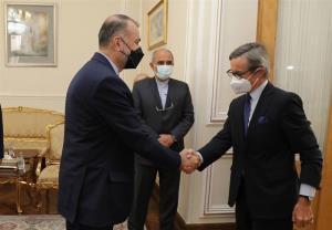 دیدار دبیر کل وزارت خارجه اتریش با امیرعبداللهیان