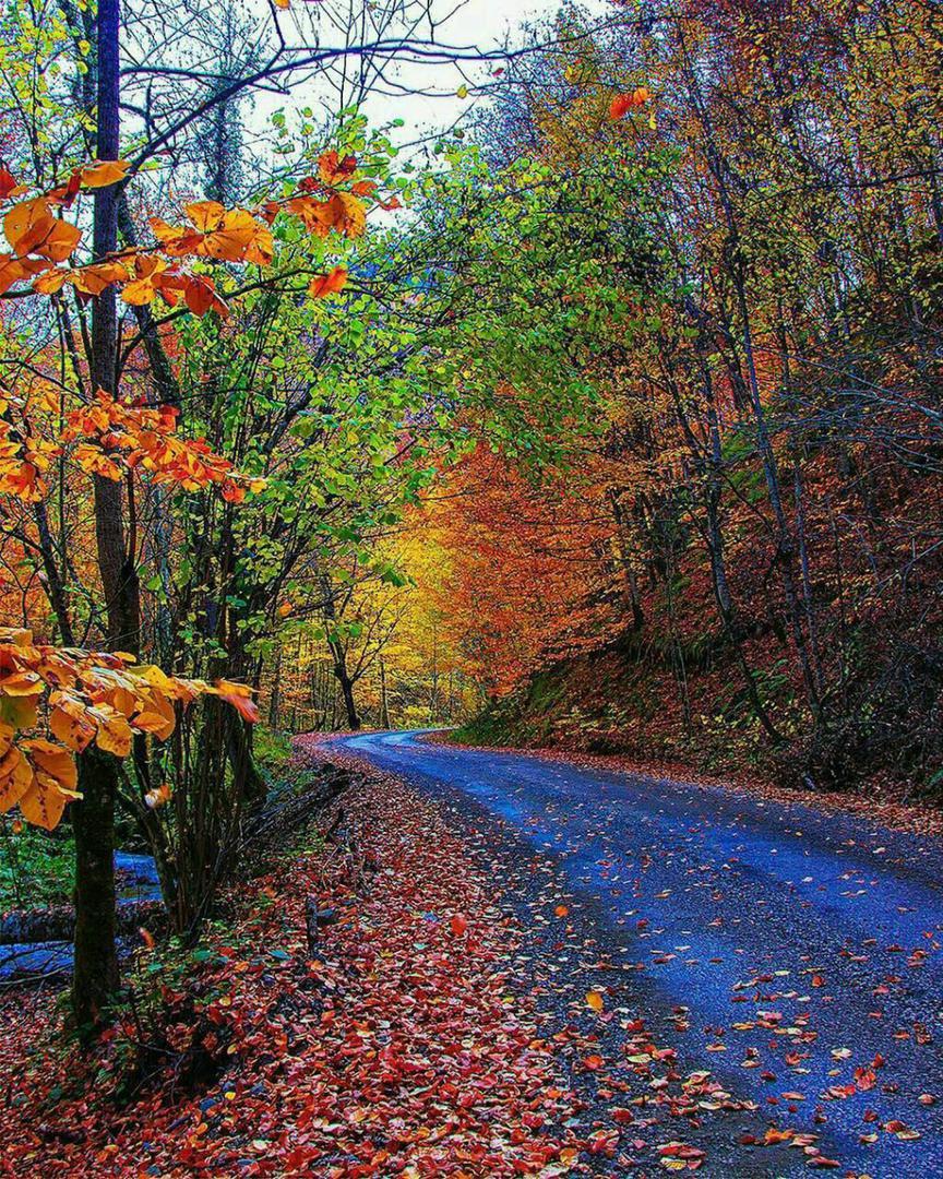 پاییز هزار رنگ روستای حیران اردبیل