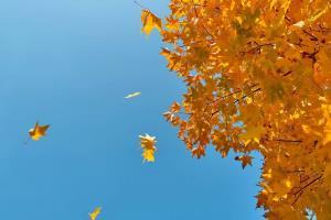 آسمان مازندران امروز و فردا صاف و ابری