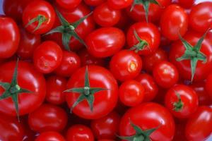 چرا گوجه در اصفهان گران شد؟