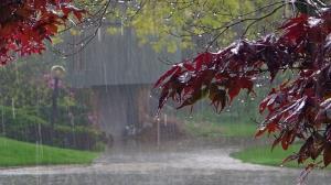 پیش بینی بارش باران برای استان سمنان
