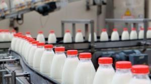 علت تغییر قیمت شیر در کهگیلویه و بویراحمد افزایش بهای علوفه اعلام شد