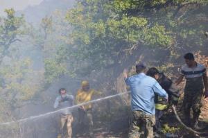 جنگل های مازندران مجهز به پایگاه اطفای هوایی حریق می شود